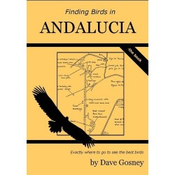 Finding Birds in Andalucia...
