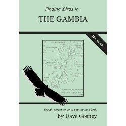 Finding Birds in The Gambia...