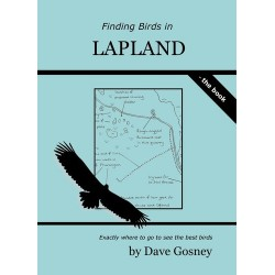 Finding Birds in Lapland...