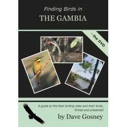 Finding birds inThe Gambia...