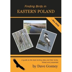 Finding Birds in Eastern...