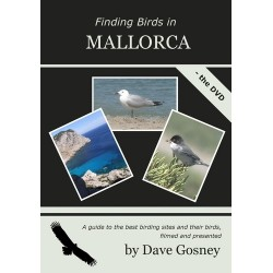 Finding Birds in Mallorca -...